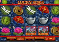Lucky Koi screenshot